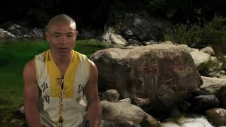 insant health the shaolin qigong workout for longevity
