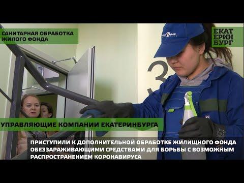 Управляющие компании Екатеринбурга приступили к санитарной обработке жилого фонда