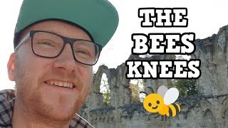 """JACK FACTS - What does """"the bees knees"""" mean?"""