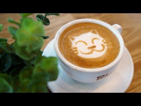 Cat :: Latte Art