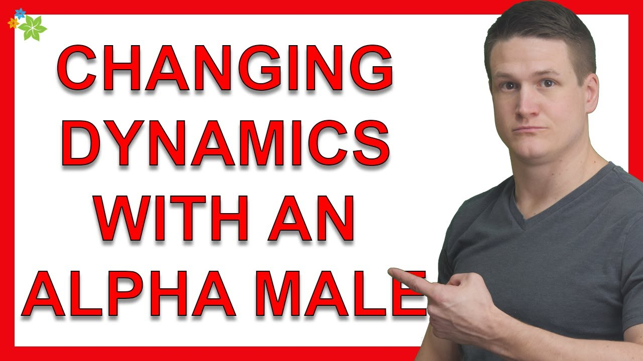 How Do I Change The Dynamic I Currently Have With An Alpha Male