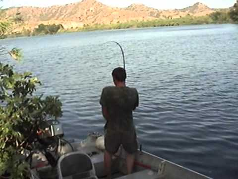 Ebro Fishing Dreams
