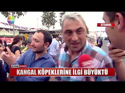 Sivaslılar İstanbul'da Buluştu