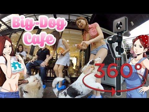 Big Dog Cafe Bangkok- Madventure Camera, Moza 360º Demo