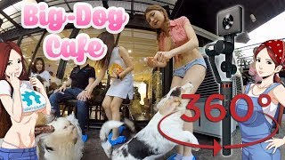 Big Dog Cafe Bangkok- Madventure Camera, Moza 360º Demo