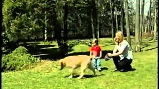 2003 Petland Discounts Commercial.