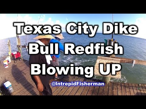 Texas city dike trout wade doovi for Tides for fishing texas city