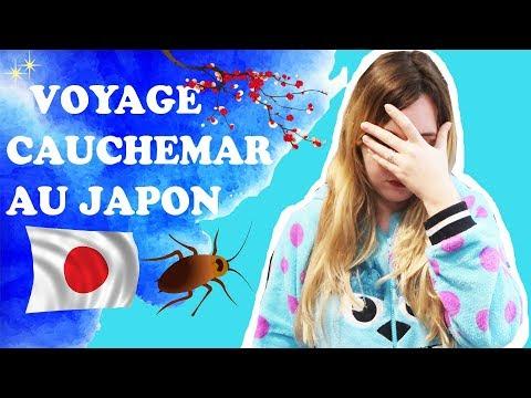 Pourquoi mon voyage à Tokyo a été un cauchemar... Je vous explique tout sur mes galères au Japon.
