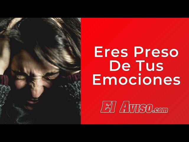 Eres Preso De Tus Emociones | El Aviso Magazine 2021