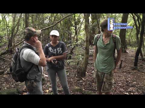 Tour Cerro Guazapa y Suchitoto, El Salvador