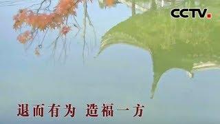 [中华优秀传统文化]退而有为的智慧| CCTV中文国际