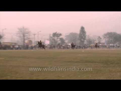 Fast and furious: Horse race at Kila Raipur
