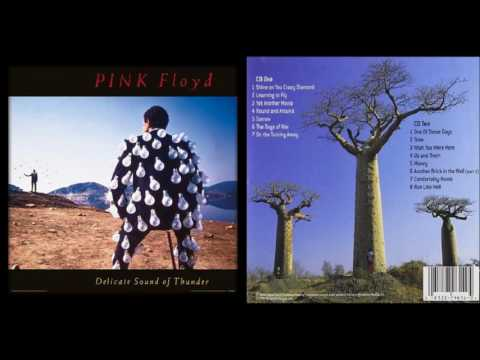 Pink Floyd: Delicate Sound of Thunder CD1 - 1988