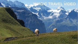 Grindelwald - Männlichen - Kleine Scheidegg - Panorama Trail