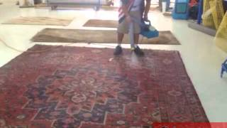 Oriental Rug Mold Process Fort Lauderdale