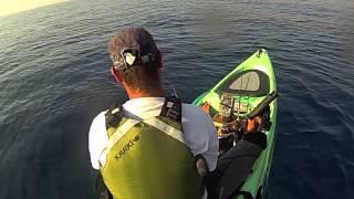 pêche en kayak Denti touche en direct !!! abaco 4.20