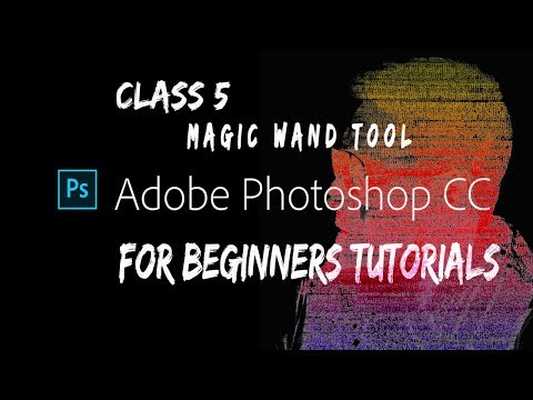 Photoshop For Beginners   Class 5   Magic Wand Tool