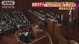どうなる「103万円の壁」 国会で審議始まる(17/02/16)