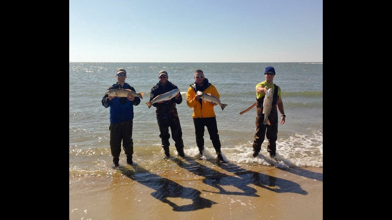 Amazing surf fishing action cape lookout nc red fish for Carolina beach fishing