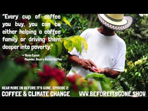 Coffee & Climate Change - Before It's Gone Episode 2