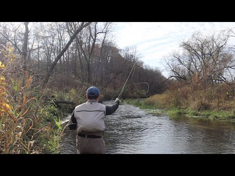 FLY FISHING THE DRIFTLESS AREA: HIS FIRST TIME FISHING HERE! (Paint, Waterloo, & Clear Creek Iowa)