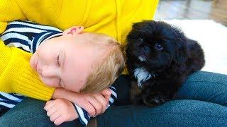 Are you Sleeping Brother John | Nursery Rhymes & Kids Songs