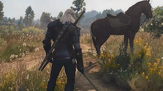 The Witcher 3 Wild Hunt Gameplay - GTX 560 Q6600 6GB PC HD