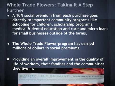 A Glimpse at Whole Trade Flowers from Whole Foods Market, Harbor East.wmv