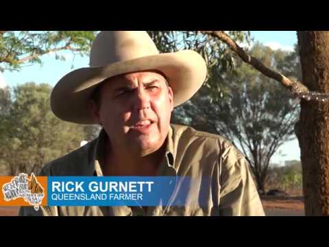 Labor and the Greens Native Vegetation Management Act is Killing Farming in Australia