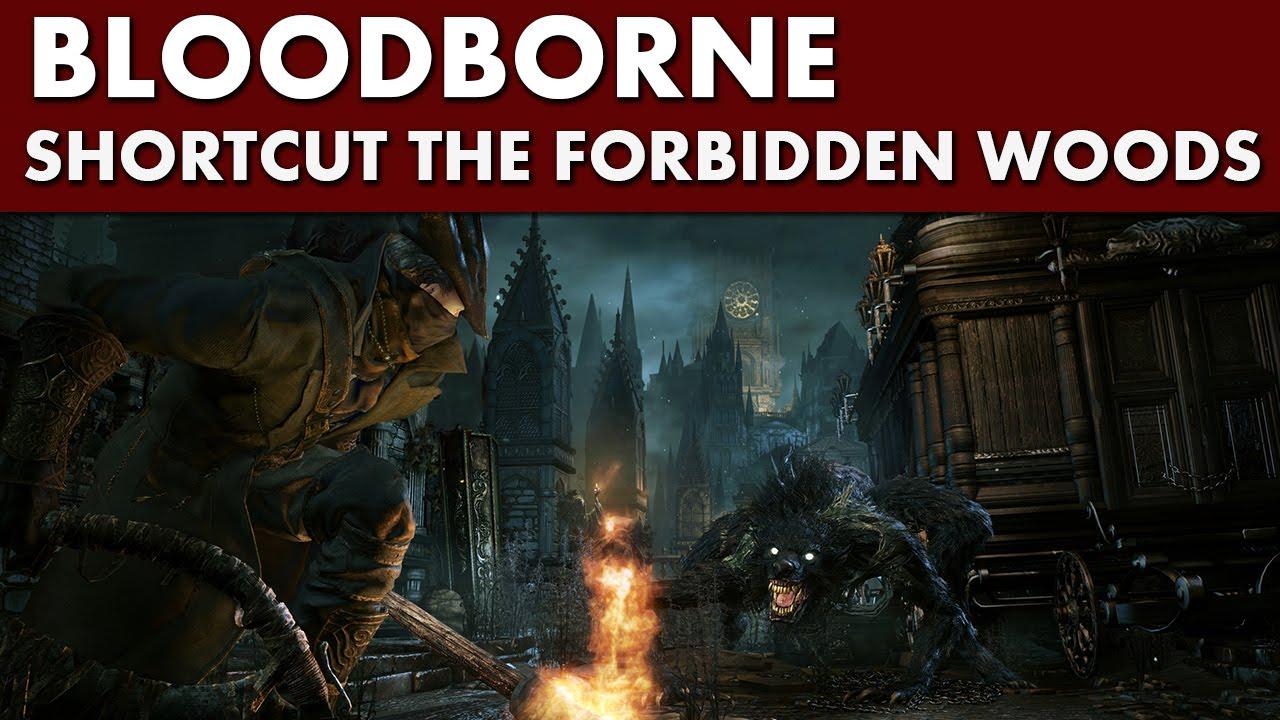 how to get to forbidden woods bloodborne