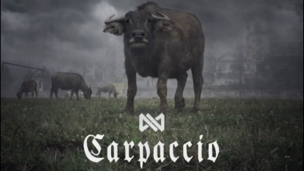 Kinetical - Carpaccio
