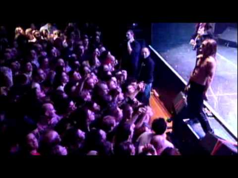 iggy-pop-lust-for-life-live-at-the-avenue-b-tom-collins