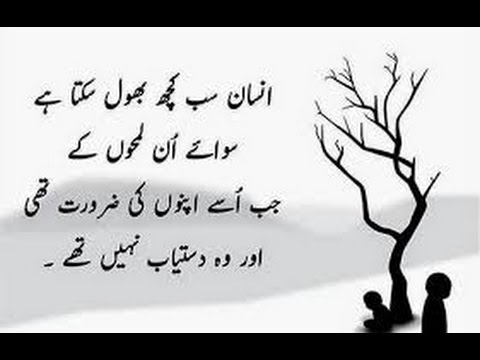 Best Quotes In Urdu And English From Great Education World Youtube