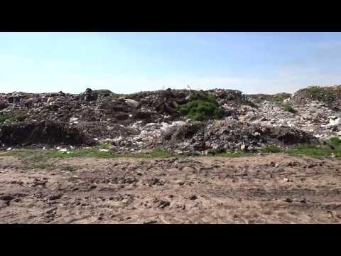 Alexandria' s waste issue