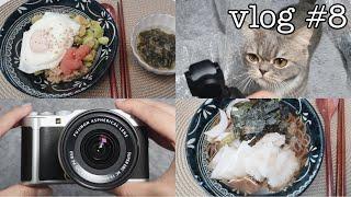 일상 브이로그 | vlog | 냉모밀 | 고구마 에그…