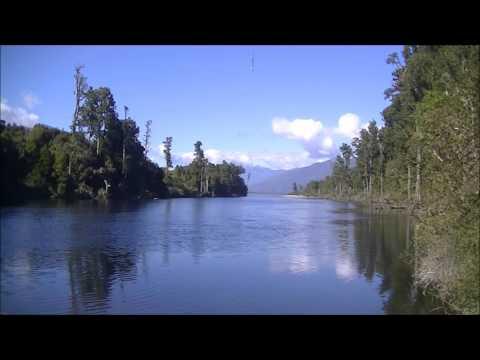 Relaxing New Zealand Birdsong - Kotuku Awa