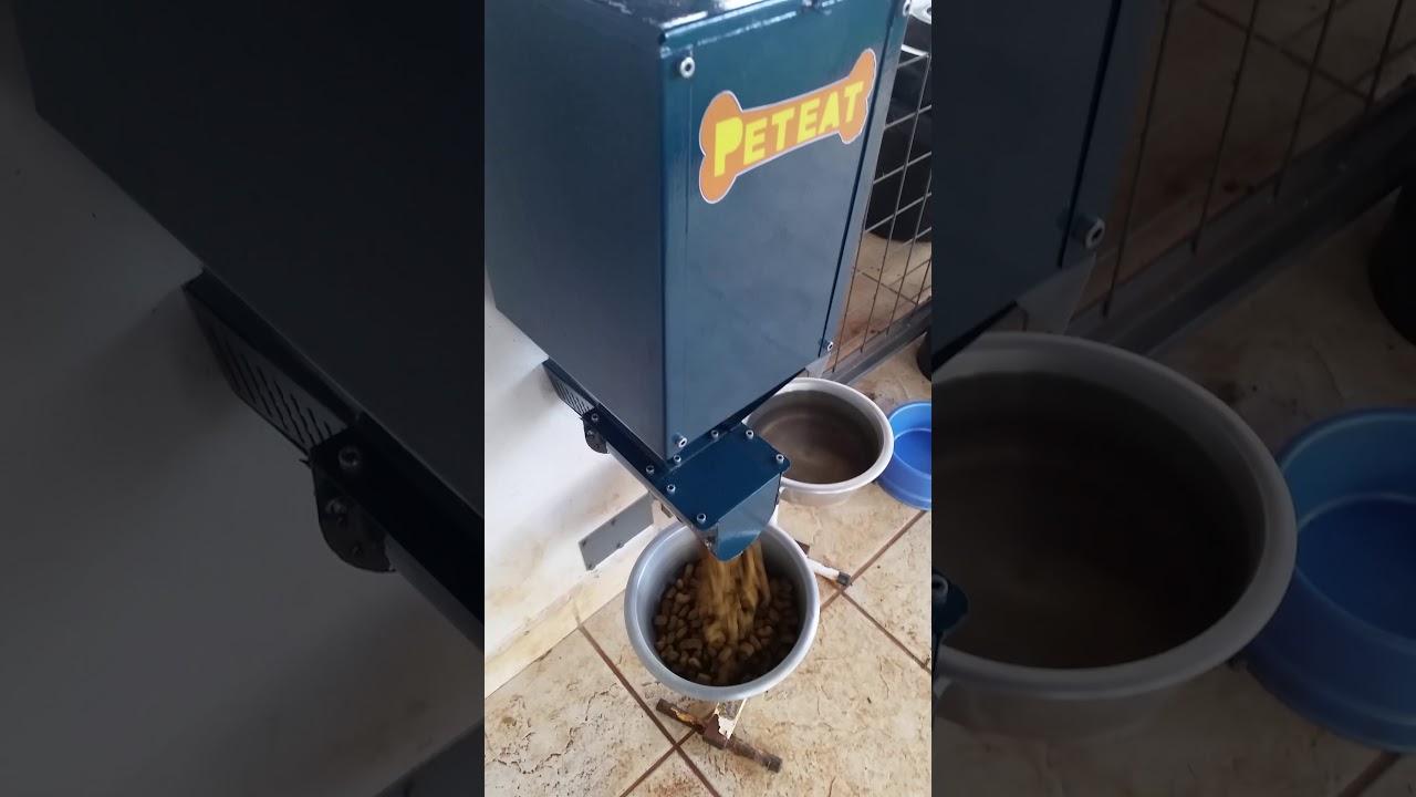 Comedouro Automático Elétrico Cachorros Cães Gatos Pets