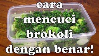 Cara Mencuci Brokoli Dengan Benar | Cara Mencuci Sayur Dengan Benar