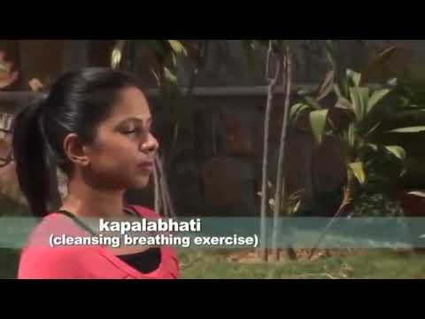 Sivananda Yoga Class - 90 min
