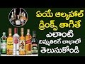Why alcohol is good for you? | Health Benefits Of Drinking Alcohol | Health Tips | VTube Telugu