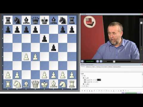 Nigel Davies - 1...b6 for practical players