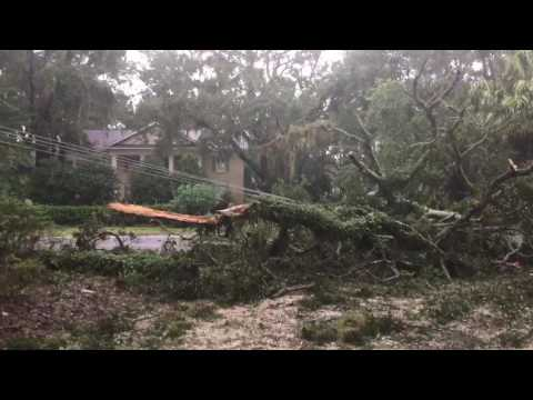 7:45 a.m. update | More from Frederica Road, St. Simons Island