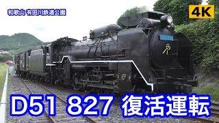 D51-827 乗車体験 有田川町鉄道公園【4K】