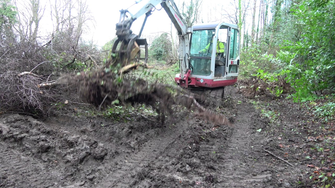 Woodland work with the Takeuchi TB125