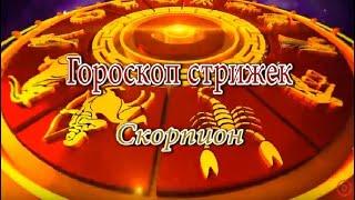 Скорпион. Гороскоп стрижек