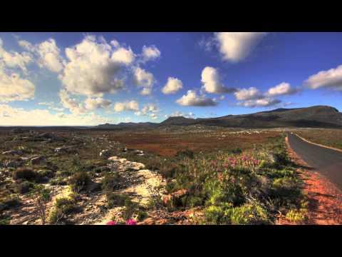 Güney Afrika - Gözüme Takılanlar