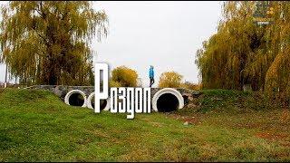 Село, в якому немає безробіття, є чистота і страуси/СелоVIE/Роздол
