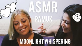 ASMR - WITH MOONLIGHT WHISPERING 🌺 MAKE UP & FACE BRUSHING TURKISH 🌺 MAKYAJ VE YÜZ FIRÇALAMA