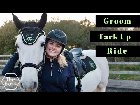 Groom, Tack up and Ride with Me and my Horse for Showjumping   Equestrian Routine   This Esme