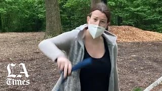 Amy Cooper Apologizes After Central Park Confrontation